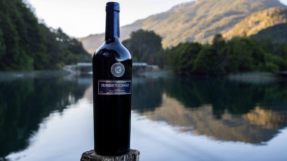 5 bodegas para conocer la ruta del vino en Patagonia